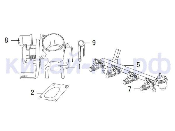 Дроссель. Рампа топливная GREAT WALL Hover H3
